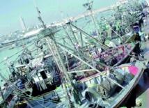 La productivité du secteur de la pêche en deçà des potentialités