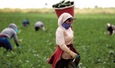 Travail décent : une denrée rare en Afrique du Nord