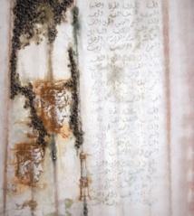 La station du proche/lointain dans les œuvres picturales de Noureddine Fathy