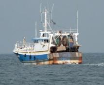 La lutte contre la pêche illicite est lancée