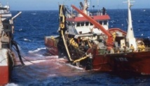 L'accord de pêche Maroc-UE à l'ordre du jour