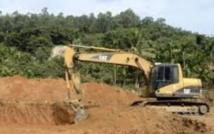 Chine: les forêts de Hainan détruites, leur protecteur réduit au silence