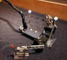 FlipperBot, un robot pour la sauvegarde des espèces menacées