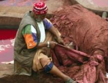 Six circuits touristiques pour revitaliser l'artisanat à Fès