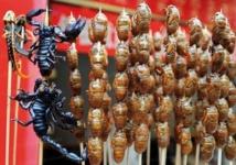 Et si les insectes repoussaient le fléau de la famine ?