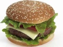 Insolite : Un hamburger avec de la viande artificielle