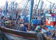 Des moteurs de barques distribués aux pêcheurs à Al Mrissa