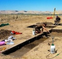Décryptage du mode de vie des premiers Néo-Zélandais