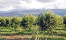 Le Maroc, un exemple à suivre en matière d'économie verte