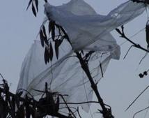 La chasse aux sacs en plastique est déclarée