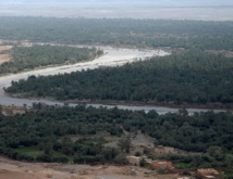Pour la préservation du patrimoine naturel des écosystèmes sahariens