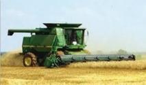 La production céréalière de Doukkala-Abda devrait augmenter de 120% en 2013