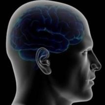 De faux souvenirs de guerre implantés dans le cerveau de soldats