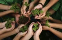 L'éducation à l'environnement, un levier du développement durable
