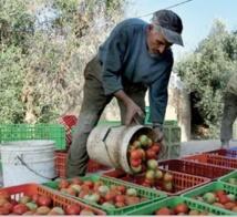 Bilan satisfaisant du Programme MCA-Maroc. Quid du suivi ?