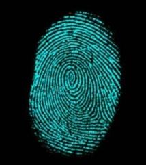 De nouvelles techniques pour révéler les traces cachées de l'empreinte digitale