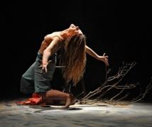 Le Festival de danse moderne fête son 30ème anniversaire à Vienne