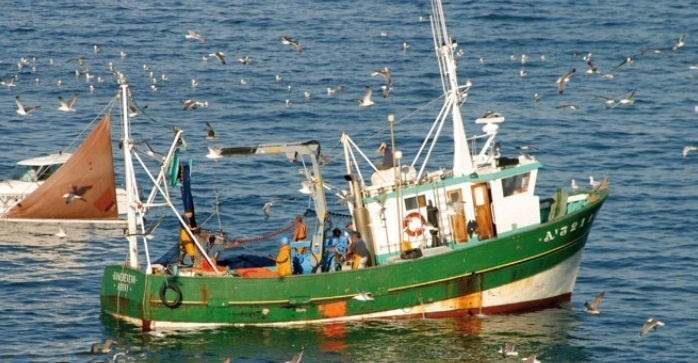 Hausse des débarquements  de la pêche côtière
