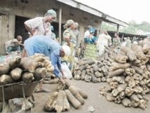 Le Nigéria balance entre croissance et développement