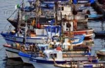 Distribution d'embarcations de pêche à Laâyoune