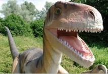 Les dents des dinosaures herbivores repoussaient tous les mois