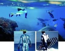 Des chercheurs inventent une combinaison à rayures anti-requin