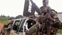 Soldats et bulldozers pour reconquérir les forêts ivoiriennes