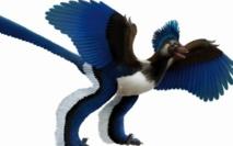 People : Archaeoptéryx n'était pas le seul à avoir une cervelle d'oiseau