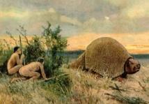 Des animaux géants à l'origine de la fertilisation de l'Amazone
