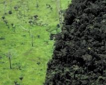 Le 20 août, l'humanité a déjà consommé toutes les ressources naturelles de l'année