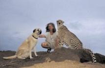 La Namibie redécouvre le chien de berger pour protéger les guépards