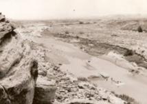 Célébration du 76ème anniversaire de la bataille de Boufekrane