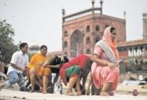 """En Inde, on se soigne toujours en faisant couler le """"sang impur"""""""