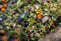 Le gaspillage alimentaire porte préjudice à l'écologie