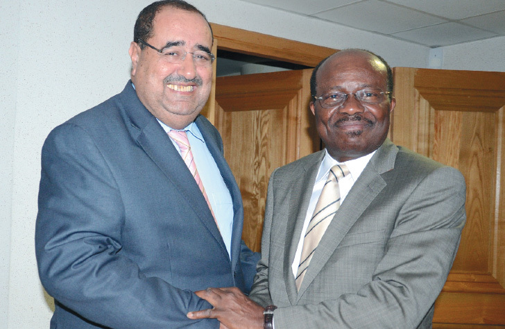 Entretien avec Emmanuel Golou, président du comité Afrique de l'Internationale socialiste