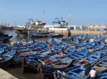 La pêche côtière et artisanale a le vent en poupe