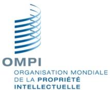L'AMACPI acquiert le statut de membre d'observateur permanent à l'OMPI à Genève