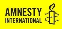 Amnesty International épingle le régime égyptien