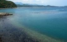 Insolite : Parc aquatique