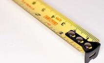 Intelligence : la taille compte