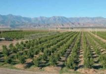 La croissance non-agricole peine à se redresser