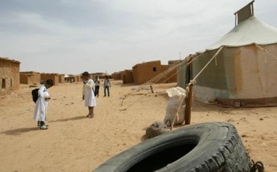 Le Parlement européen demande à l'Algérie d'assumer ses responsabilités pour améliorer la situation des droits de l'Homme dans les camps de Tindouf