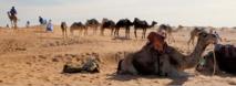 Les nomades de M'Hamid El Ghizlane en festival
