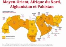 Perspectives de croissance assombries dans la région MENA