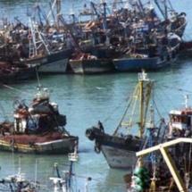 Les capitaines des céphalopodiers demandent à Benkirane d'assumer ses responsabilités