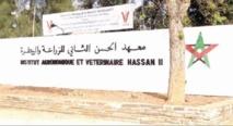 L'environnement au cœur des débats à Rabat