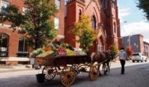 Les marchands ambulants, une tradition qui reprend vie à Baltimore