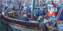 Hausse des débarquements de la pêche côtière et artisanale