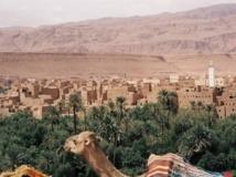 Zagora accueille le 2ème Forum international des oasis