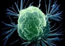 Conférence annuelle de l'Association du Moyen-Orient pour la cancérologie